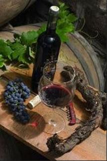 dingac peljesac wine