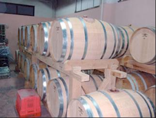 peljesac wine cellar